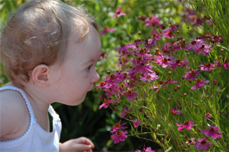 Catherine_smells_the_flower